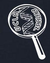cropped-zarlab-logo-final.jpg
